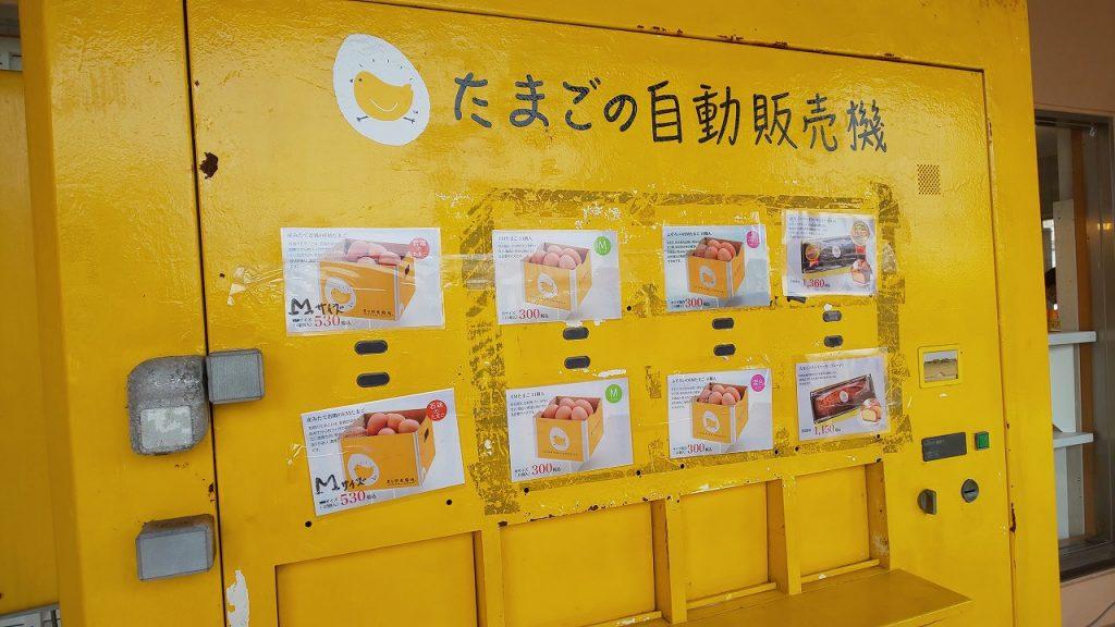 美ら卵養鶏場の卵の自動販売機アップ